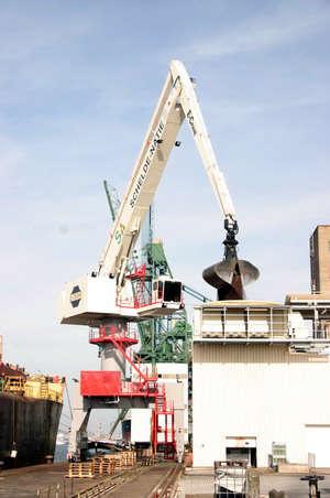 schelde-natie-e-crane